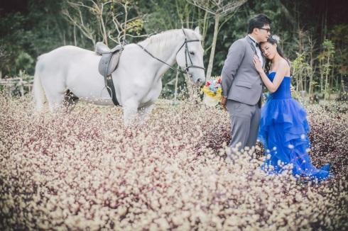浪漫白馬婚紗照-新竹婚攝東哥